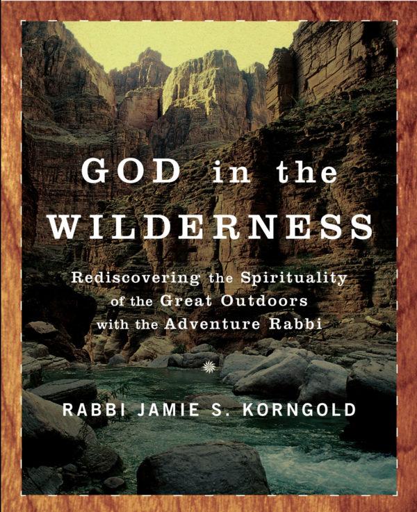God In the Wilderness book by Rabbi Jamie Korngold
